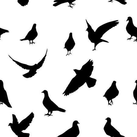 The seamless background of the pigeons. Vector illustration