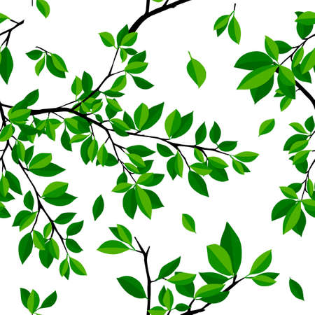 The seamless background is a sprig of wood. Vector illustration 向量圖像