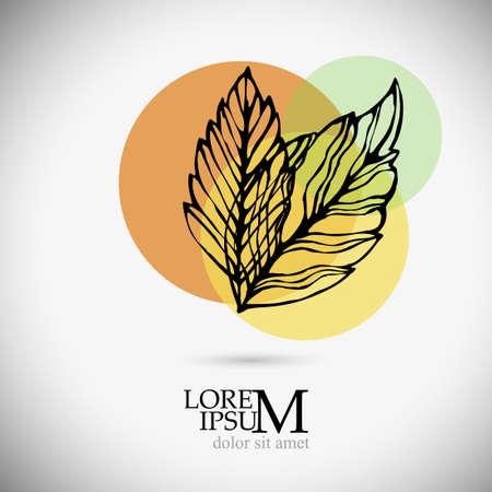Colorful autumn leaf. Vector illustration