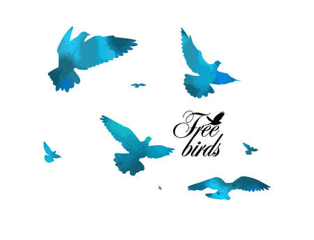 Bird watercolor. A flock of colorful birds. Vector