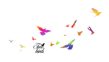 Bird watercolor. A flock of colorful birds. Vector