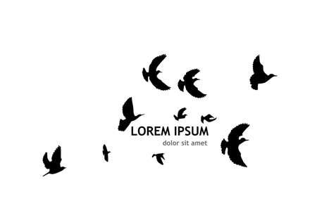 A flock of flying birds. Vector illustration 矢量图像
