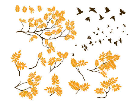 A set of twigs with birds flying. Tree branch with fresh yellow autumn leaves. Vector illustration