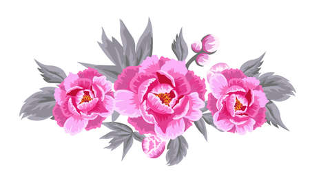 Abstraction with pink peonies. Vector illustration