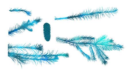 set of fir branch on white background. vector illustration
