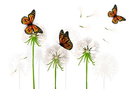 Dandelions with butterflies. Vector illustration Vettoriali