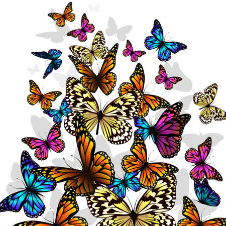 Flying multicolored butterflies. Vector illustration