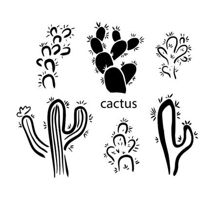 A set of simple cacti. Vector illustration