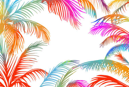 Frame with colorful palm leaves. Vector illustration