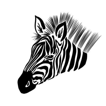 Monochrome zebra. Head to profile graphics. Vector illustration