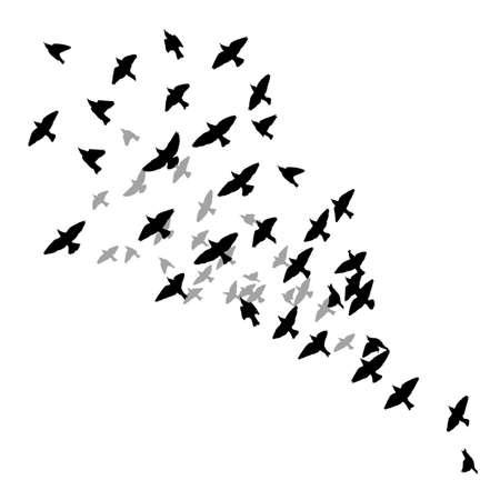 A flock of flying birds. Vector illustration Ilustración de vector