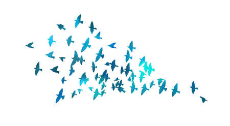 Bird watercolor. A flock of colorful birds. Mixed media. Vector illustration