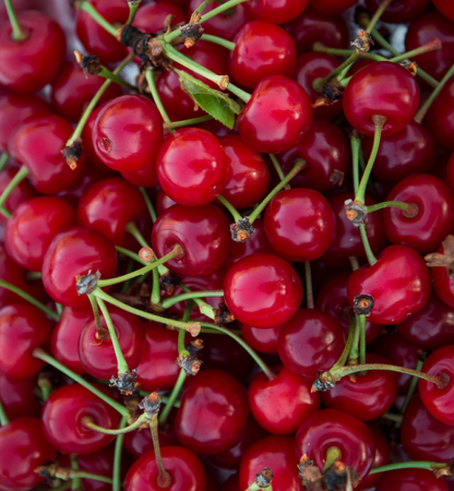 background texture of a lot of cherries Stockfoto