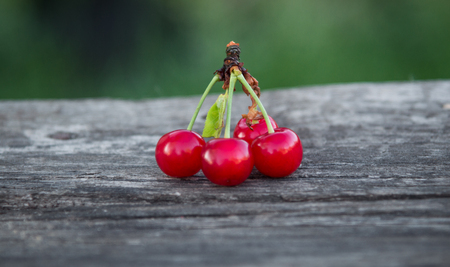 4 cherries in the open air on the background of nature Stockfoto