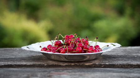 cherries in a metal plate outdoors Stockfoto