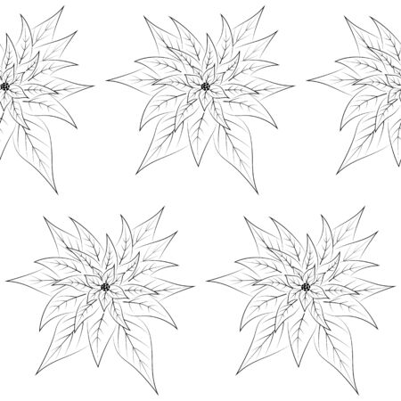 Christmas poinsettia flowers seamless pattern. Black outline seamless texture. Template. Textiles, wrapping paper, wallpaper design. Isolated objects on a white background. Vector illustration.