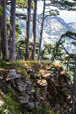 View from Mount Ai-Petri. Light sunny summer day, Crimea, Yalta, Russia. Archivio Fotografico