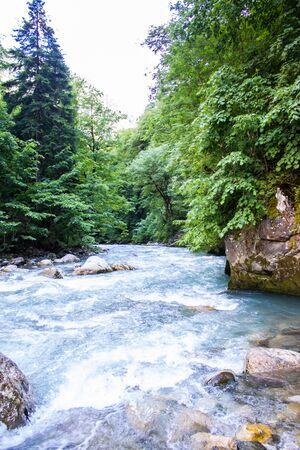 A mountain river flows through a green forest along the mountains. Abkhazia Banco de Imagens - 128568249