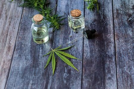 Cannabis herb and leaves for treatment with decoction, tincture, extract, oil. Hemp oil. Selective focus.
