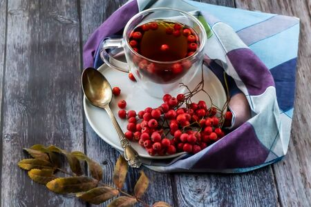 Hot healing tea, mountain ash tea. Applied with a lack of vitamins, anemia, metabolic disorders. Reduces the level of harmful cholesterol in the blood, strengthens blood vessels. Healing drink in a cup with a napkin Stockfoto