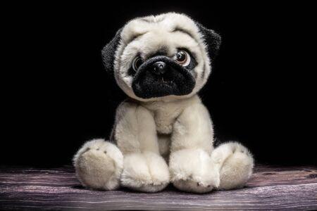 Cute plush puppy toy. On a dark background
