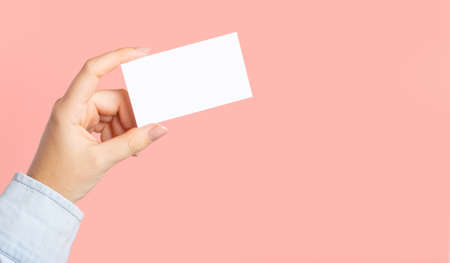 Female hands with cutaway, blank menu, discount card, business card on color pink beauty background. Template for design. Branding mockup template.