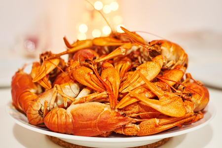 Plate with cooked freshwater crayfish red on white table close up on a bright background