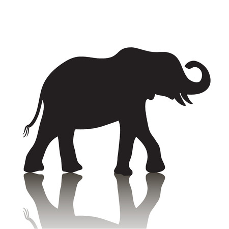 vector elephant silhouette with shadow isolated on white background
