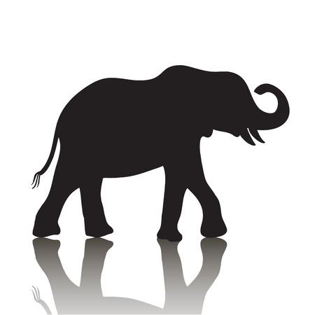 siluetas de elefantes: vector silueta de elefante con la sombra aislada en el fondo blanco