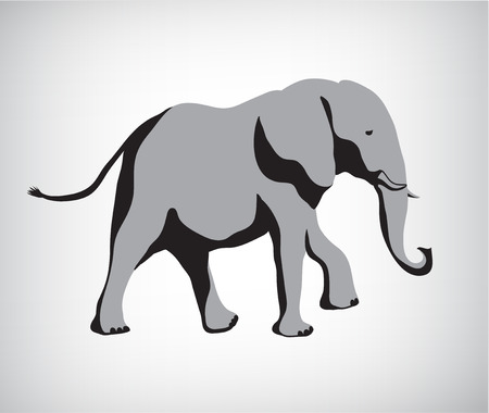 african grey: rasterized copy of vector. elephant illustration silhouette isolated