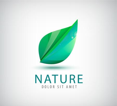 vector green leaf organic icon, logo isolated