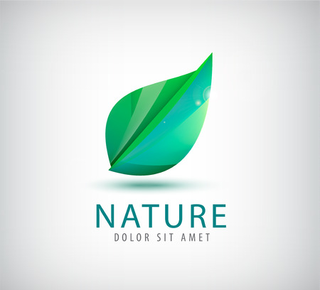 vector green leaf organic icon, logo isolated