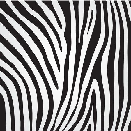 animales de la selva: vector blanco y negro de textura de piel de cebra, modelo, fondo