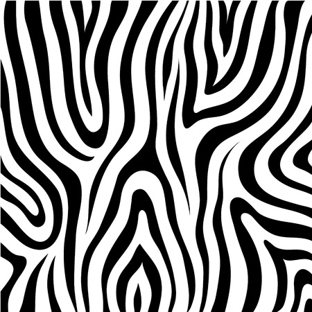 vector black and white zebra skin texture, pattern, background Illustration