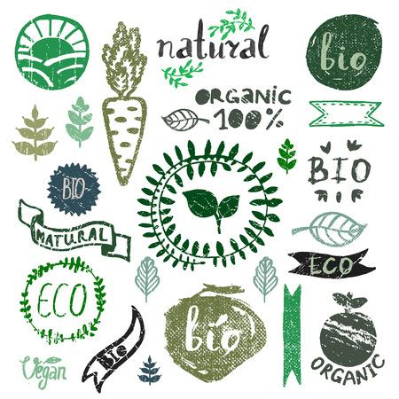 水彩のロゴタイプを設定します。有機、バイオ、エコロジー、エコ自然のデザイン テンプレート。手描きの絵画。ビンテージ ベクトル、グリーン色  イラスト・ベクター素材