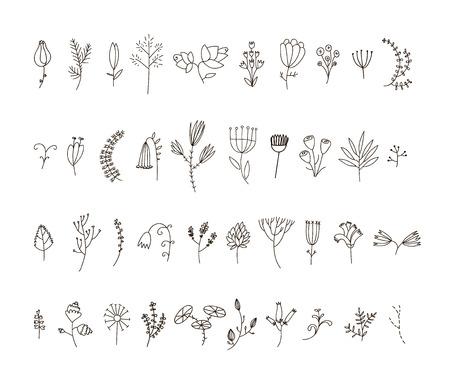 40 の手描き線花と花柄のセットをベクトルします。装飾、パターンまたは任意のデザインの使用