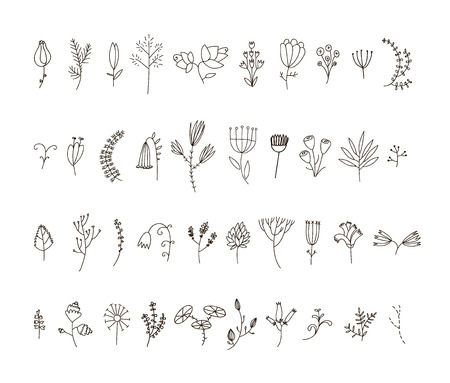 Vector set of 40 hand drawn line flowers and florals. Use for decoration, patterns or any design