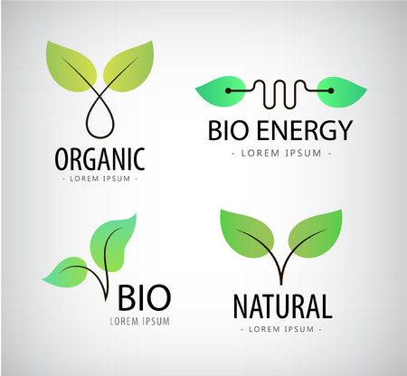 Vector set of green leaves, eco logos, bio logos, natural, organic logos Stock Vector - 52738436