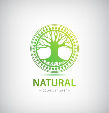 natural beauty: Vector circle eco logo, tree logo, nature organic logo, icon isolated. Tree of life, round sign emblem