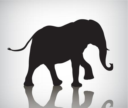 Siluetta dell'elefante di vettore, illustrazione con ombra. Bianco e nero