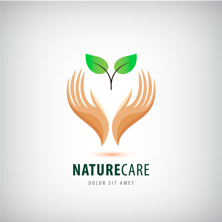 natural health: Vector  - hands holding leaves, eco icon, nature care. protecting natural resources, organic products, wellness industry, alternative health