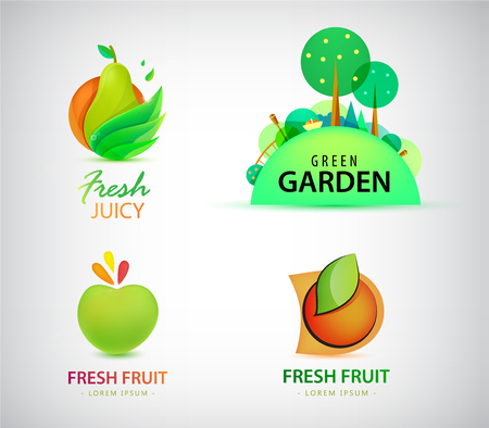 Vector Set of organic, bio, eco and nature food logos and labels. Fruit, garden farm fresh pear, apple