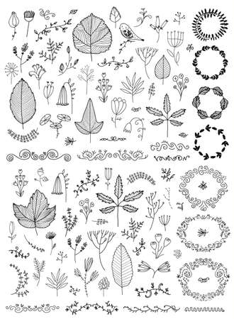 Vector set of hand drawn doodle flowers, florals, leaves. Line drawing. Graphic collection with fantasy field herbs. Botanical elements for design. Wreaths, laurels, dividers