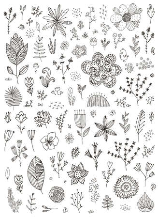 Vector set of hand drawn doodle flowers, florals, leaves. Line drawing. Graphic collection with fantasy field herbs.