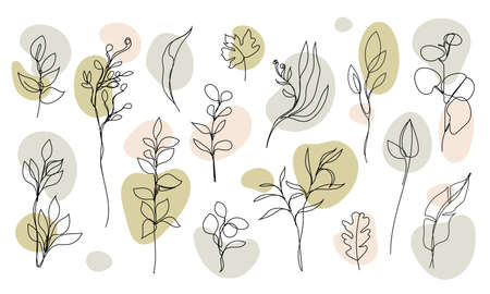 Vector set of hand drawn, single continuous line leaves, branches, plants. Art floral elements. Use for t-shirt prints, logos, cosmetics and beauty design