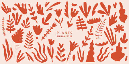 Vector Set of exotic palm leaves, plants, flowers of various shapes and sizes illustration, isolated. Terracotta color plant collection in flat style. Hand drawn