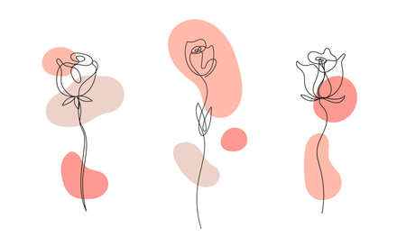 Vector set of hand drawn, single continuous line flowers - roses , leaves sketch. Art floral elements. Use for t-shirt prints Illustration