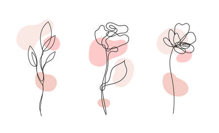 Vector set of hand drawn, single continuous line flowers - roses , leaves sketch. Art floral elements. Use for t-shirt prints,  cosmetics.