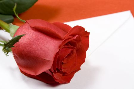 red rose and envelope on red background photo