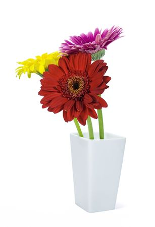 colored gerbers in vase isolated over white  photo